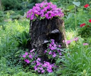 клумба из старого дерева